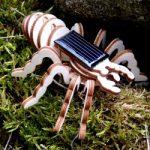 jouet en bois solaire boutique souvenirs spaycific'zoo