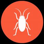 jeu-game-phobie-insecte